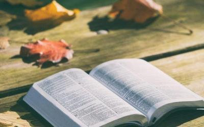 What do Seventh-day Adventists believe?