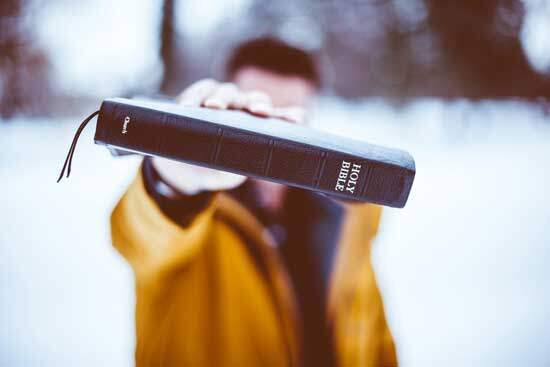 Holy Bible as Ellen White writings always point her readers back to the Bible as the final & ultimate authority in the Church